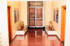 Deccan Plateau Gallery