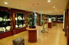 delhi-gallery-new1