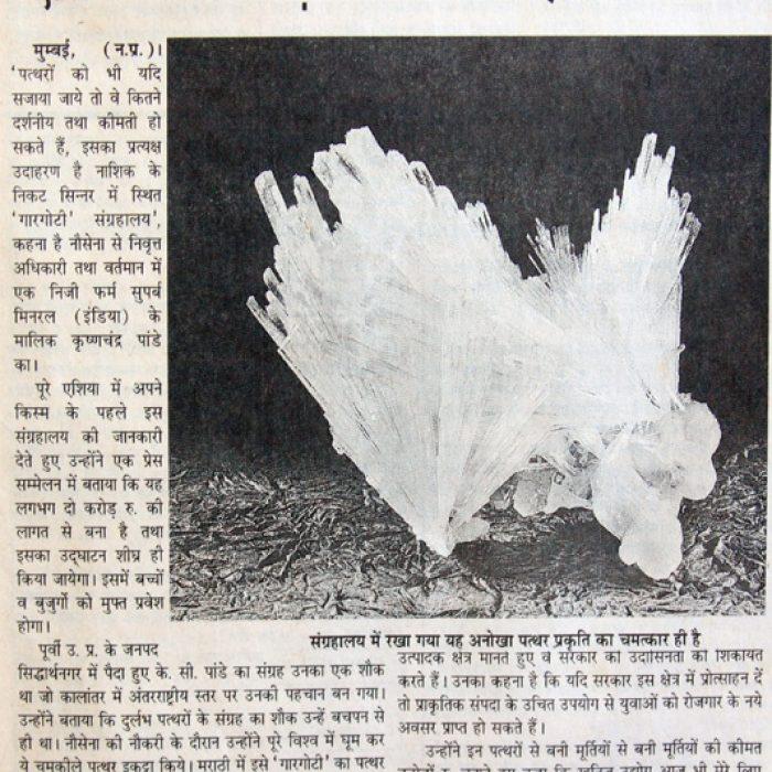 news-hindi-06